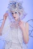 Winter Fairy Stock Photography