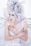 Winter Fairy Royalty Free Stock Photo