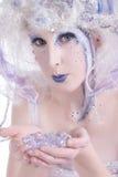 Winter Fairy Royalty Free Stock Photos