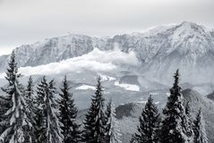 Winter fairy tale in the mountains. Winter fairy tale in Bucegi mountains, in Romania, among fir trees and white clouds Royalty Free Stock Image