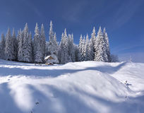 Winter fairy tale after heavy snowfall Royalty Free Stock Photos