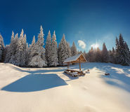 Winter fairy tale after heavy snowfall in mountain forest Stock Photography