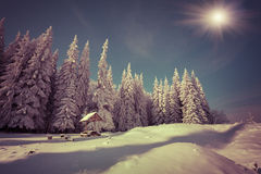 Winter fairy tale after heavy snowfall in the mountain forest. Retro style Stock Photography