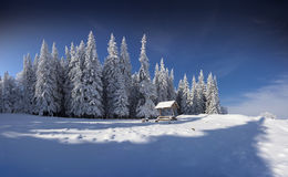 Winter fairy tale after heavy snowfall in the mountains. Winter fairy tale after heavy snowfall in the mountain forest Stock Photo