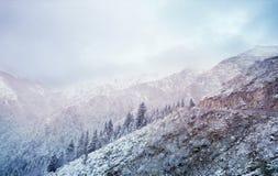 Winter fairy tale on the snow mountain Stock Image