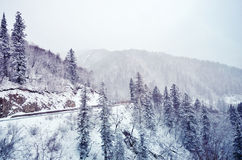 Winter fairy tale on the snow mountain Stock Images