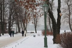Winter fairy tale in St. Petersburg. February stock photos