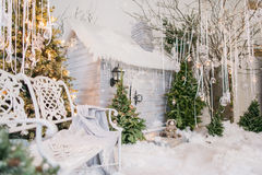Winter fairy tale with trees Royalty Free Stock Photo