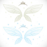 Winter fairy wings with tiara bundled Stock Images
