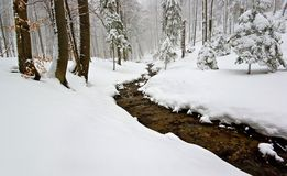 The Winter Fairytale. Winter forest and river in mountain Mala Fatra , Slowakia Royalty Free Stock Photos