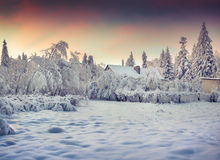 Winter fairytale, heavy snowfall covered the trees and houses in Stock Photography