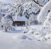 Winter fairytale, heavy snowfall Royalty Free Stock Images
