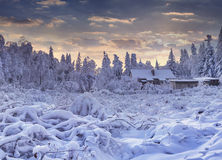 Winter fairytale, heavy snowfall covered the trees and houses in Stock Images