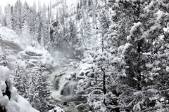 Winter at falls of Yellowstone National Park Stock Photography