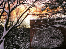 Winter Fantasy. Snow encrusting trees, a tower and sunset royalty free stock photos