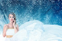 Free Winter Fantasy Fashion Portrait Of Young Woman Stock Images - 100587484