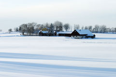 Winter farm Royalty Free Stock Photos