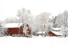 Winter On The Farm. A snow covered homestead in the middle of a Wisconsin winter on an overcast day. The overcast sky removes most of the colors leaving the Royalty Free Stock Images