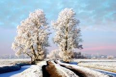 Winter on the Farm Royalty Free Stock Photo