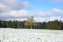 Winter Farm Field Landscape Royalty Free Stock Photography