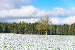 Winter Farm Field Landscape Stock Photo