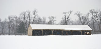 Winter Farm Panorama. A panoramic rural Winter farm scene during a light snowfall in Central New Jersey Stock Photo