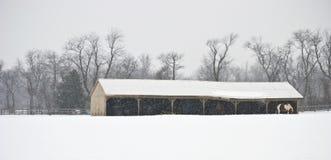 Winter Farm Panorama Stock Photo