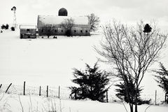 Winter Farm Scene Stock Images