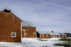 Winter Farm. Snow surrounds multiple farm buildings in Princetown, NY Royalty Free Stock Photography