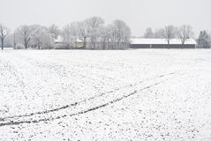 Winter Farming Stock Images