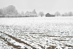 Winter Farming Royalty Free Stock Images