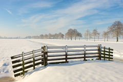 Winter farmland. A sunny winter day in Dutch landscape Royalty Free Stock Photo