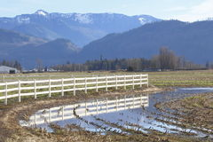 Winter Farmland Royalty Free Stock Photography