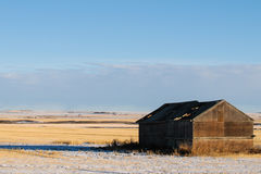 Winter Farmland Royalty Free Stock Photo