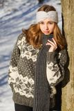 Winter fashion beauty. Outdoors portrait of a brunette winter fashion beauty Stock Photography