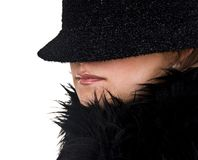 Winter Fashion - Incognito Lady Stock Photography