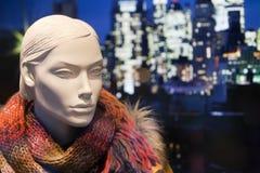 Winter fashion Royalty Free Stock Image