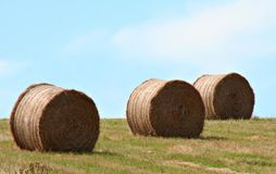 Winter Feed. Bales of hay for winter feed Royalty Free Stock Image