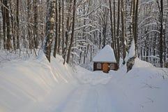 Winter-Feen-Endstück Lizenzfreie Stockfotos