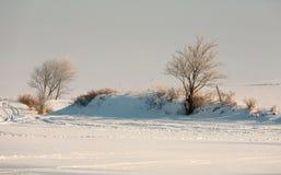Winter-Feld Lizenzfreie Stockfotos
