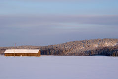 Winter-Feld mit Stall Stockbild