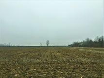 Winter, Feld und Nebel Lizenzfreie Stockbilder