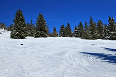 Winter on the Feldberg in the Black Forest. Winter on the Feldberg which is the highest mountain in the Black Forest stock photos