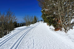 Winter on the Feldberg in the Black Forest. Winter on the Feldberg which is the highest mountain in the Black Forest royalty free stock images