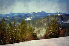 Winter on the Feldberg in the Black Forest. Winter on the Feldberg which is the highest mountain in the Black Forest royalty free stock image