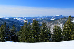 Winter on the Feldberg in the Black Forest. Winter on the Feldberg which is the highest mountain in the Black Forest stock image