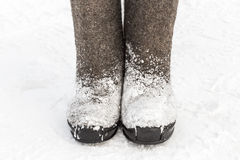 Winter felt boots in the snow Royalty Free Stock Photos