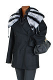 Winter female coat. With a fur collar Stock Photography