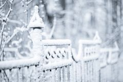 Winter fence Stock Photos
