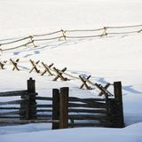 Winter fence. Royalty Free Stock Photos